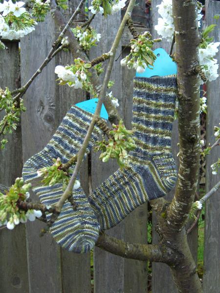 Sea-camo-weedy Socks