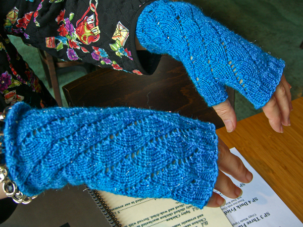 blue Spirogyra