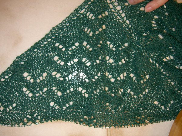 PNW Shawl progress